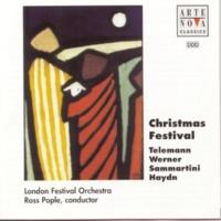 Ross Pople Christmas Festival
