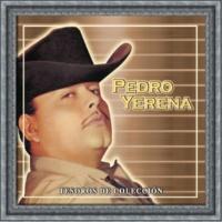 Pedro Yerena Tesoros De Coleccion - Pedro Yerena