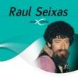 Raul Seixas Gita