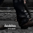 SP-D takeshi dandelion