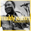Muddy Waters Rollin' Stone