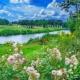 Daisuke FLOWERS OF HEAVEN
