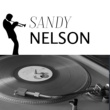 Sandy Nelson Feet Beat