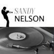 Sandy Nelson Cool Operator