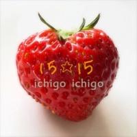 15☆15 ストローク instrumental off vocal