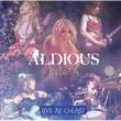 Aldious 夜桜 (Live ver.)