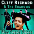The Shadows&Cliff Richard Evergreen Tree