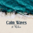 Relaxing Spa Music Relaxing Waves