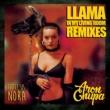 AronChupa/Little Sis Nora Llama In My Living Room (DopeDrop Remix)