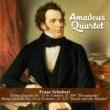 "Amadeus Quartet String Quartet No. 13 in A minor, D. 804 ""Rosamunda"": I. Allegro moderato"