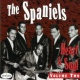 The Spaniels Heart & Soul, Vol. 2