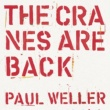 Paul Weller The Cranes are Back (Edit)
