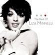 Liza Minnelli Some People (Live)