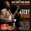 Lucky Peterson What Have I Done Wrong
