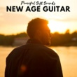 New Age Naturists New Age Guitar
