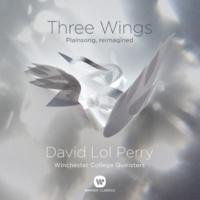David Lol Perry Three Wings