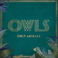 OWLS Only Animals (feat. Allyson Ezell)