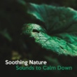 Nature Sounds for Sleep and Relaxation Nature Escape