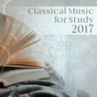 Studying Music Group Piano Sonata No. 2 in F Major, K. 280: II. Adagio