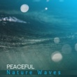 Sounds of Nature Relaxation Healing Waves
