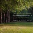 Wiener Symphoniker Symphony No. 40 in G Minor, K. 550; I. Allegro molto