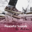 Relaxing Music Therapy Calmness