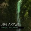 Nature Sounds Quiet Moments