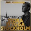 Emil Assergård Stora stygga Stockholm