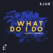 SJUR What Do I Do (Dunisco Remix)
