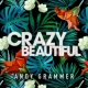 Andy Grammer Crazy Beautiful EP