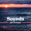 Ocean Waves for Sleep Silent Waves