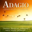 Franz Liszt Chamber Orchestra & Béla Kovács Clarinet Concerto in A Major, K. 622: II. Adagio
