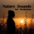 Nature Sounds Relaxation: Music for Sleep, Meditation, Massage Therapy, Spa Deep Meditation