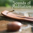 Yoga Music Soothing Sounds