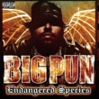 Ruff Ryders Pina Colada-Ruff Ryders featuring Big Pun and Sheik (Explicit)