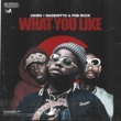 24hrs What You Like (feat. PnB Rock & MadeinTYO)