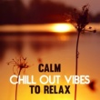 The Chillout Players Calm Vibrations