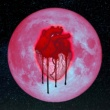 Chris Brown Heartbreak on a Full Moon