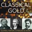 Vienna Symphony Orchestra 'Surprise' Symphony No.94 2nd Movement