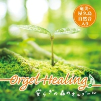 TENDER SOUND JAPAN Orgel Healing 安らぎの森のオルゴール