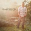 Blake Shelton I'll Name the Dogs