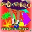 The Wildcats Popotitos