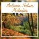 Calming Sounds Autumn Nature Melodies