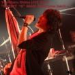 """椎名慶治 Yoshiharu Shiina LIVE 2017「RABBIT """"6"""" MAN -Welcome back-」"""