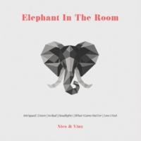 Nico & Vinz Elephant in the Room