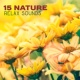 Nature Sounds Artists 15 Nature Relax Sounds