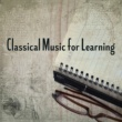 "Classical Study Music Ensemble String Quartet No. 7 in F Major, Op. 59 No. 1 ""Rasumovsky"": I. Allegro"
