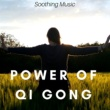 Natural Ambience Professor Power of Qi Gong