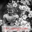 Swami Drishti Tratakauram I'm Coming Home