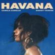 Camila Cabello/Daddy Yankee Havana (Remix)